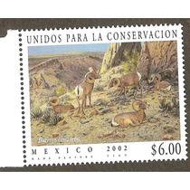 2006 Conservación Del Borego Cimarrón, Fauna Vbf