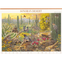 1999 Estados Unidos Desierto Sonoran Hoja Souv 10 Naturalez