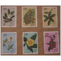 6 Estampa Timbres Postales - Plantas Medicinales - Cuba 1970