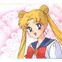 Sailor Moon Evangelion Escaflowne Super Campeones Spiderman