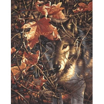 Pintura Set - Paintsworks Pintura Por Números Lobo Otoño
