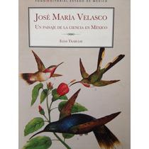 José Maria Velasco Un Paisaje De La Ciencia En Mexico
