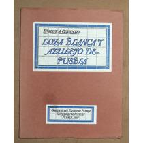 Libro Loza Blanca Y Azulejo De Puebla-tomo Segundo