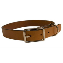 Kit Collar De Perro - 1 (2.5 Cm) Diseñe Su Propio Bricolaje