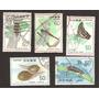 Japon Mariposas Libelulas Escarabajos