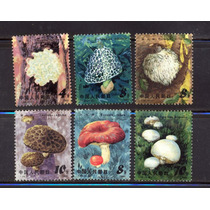 Ch38-china Edible Mushrooms T66 1981 Set De 6 Mnh-