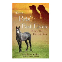 Your Pets Past Lives: & How They Can Heal, Madeleine Walker