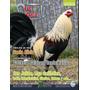 Revista Pie De Cria Gallos Marzo 2015