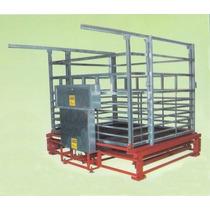Bascula Ganadera Mod. H2 2000 Kg (placa Ancha)