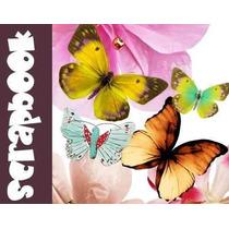 Mega Pack Scrapbooking Mundo Mariposas Y Flores Y Mas