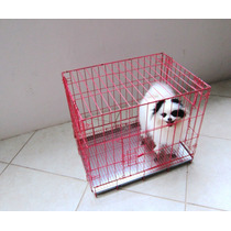 Jaula Transportad Corral Plegable Portafolio Perro Chico