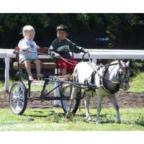 Carretas Para Caballo Miniatura - Carretitas Para Pony