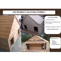 Casas Y Camas De Perros Personalizadas