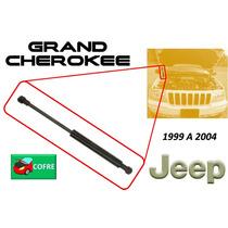 99-04 Jeep Grand Cherokee Piston Hidraulico Cofre Derecho