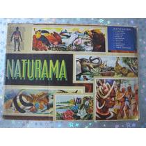 Antiguo Album Grande De Estampas De Naturama Completo