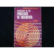 Alejandro Puron De La Borbolla, Principios De Los Procesos D