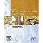 Libro: Neuroanatomía Esencial De Netter Pdf