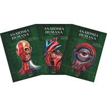 Anatomía De Quiroz Tres Tomos En Formato Digital.