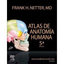 Atlas De Anatomía Humana De Netter Pdf