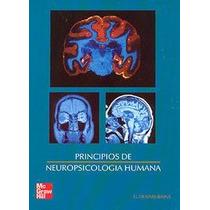 Pruebas Psicológicas Historia, Principios Y Aplicaciones
