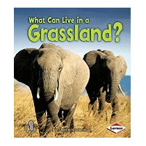 What Can Live In A Grassland?, Sheila Anderson