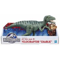 Velociraptor Charlie Jurassic World Jurassic Park Dinosaurio