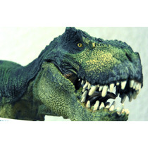 Tiranosaurio Rex Verde Papo De Coleccion Tipo Jurassic Park
