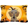 Wirehaired Dachshund De Halloween Tela Almohada Decorativa B
