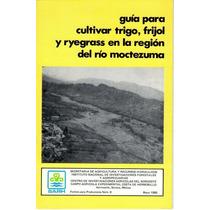 Hermosillo Sonora,guia Para Cultivar Trigo,frijol Y Ryegrass