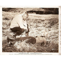 Stranger In My Arms Marilyn Monroe Jeff Chandler Sandra Dee