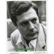 Foto Original Marcello Mastroianni Metro Goldwyn Mayer 1962