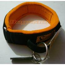 Collar Intervención Nylon Fieltro Con Asa Guardia Silverado