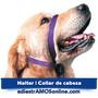 Halter + Dvd, Gentle Leader, Halti, Collar De Cabeza