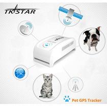 Collar Localizador Gps Tracker Tk909 Rastreador Para Mascota
