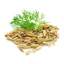 100 Gr Semillas De Hinojo Cocina Gourmet Especia