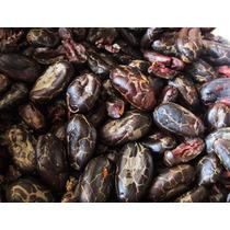 Cacao Tostado De Excelente Calidad