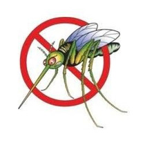 Lampara Int/ext Eliminador Mosquitos Moscas Insectos Plagas