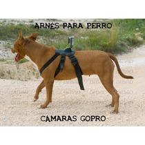 Arnés Para Perro - Accesorio Cámaras Gopro - Resistente