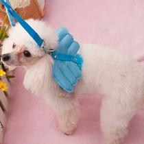 Pechera Y Correa Para Mascota Con Alitas De Angel Perro Gato