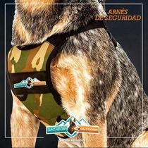 Arnes De Seguridad Para Perros - Grande - Dazhbor
