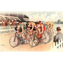 Lienzo Tela Poster Carrera De Bicicletas Usa 1895 50 X 79 Cm