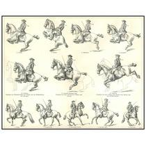 Lienzo Tela Grabado Equitación Alta Escuela Alemania 1850