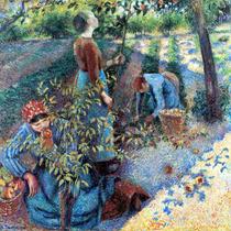 Lienzo Tela Camille Pissarro Recolectando Manzanas Arte