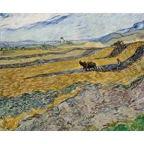 Lienzo Campo Labrador Vincent Van Gogh Sin Fecha 50 X 61 Cm