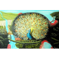 Pintura Al Oleo Pavo Real 60 X 40 Cm