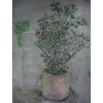 Pastel De La Academia Florie/ Base Rustica