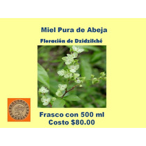 Miel Pura De Abeja Floración De Dzidzilché. $80.00