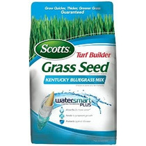 Scotts Turf Seed Constructor Hierba - Kentucky Bluegrass Mix