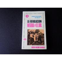 La Revolución Negra En Lo Ee.uu