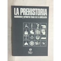 La Prehistoria Nacimiento Y Primeas Fases De La Civilización